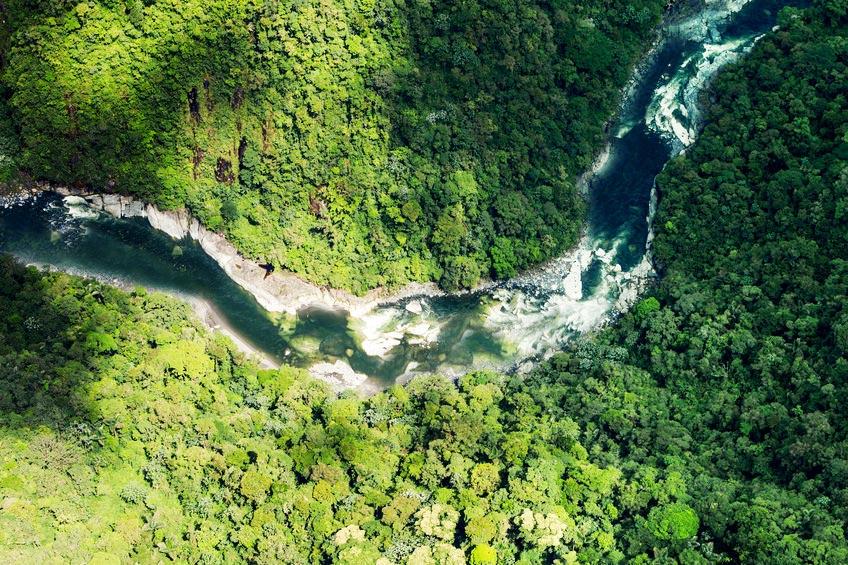 Image de la rivière Orenoque