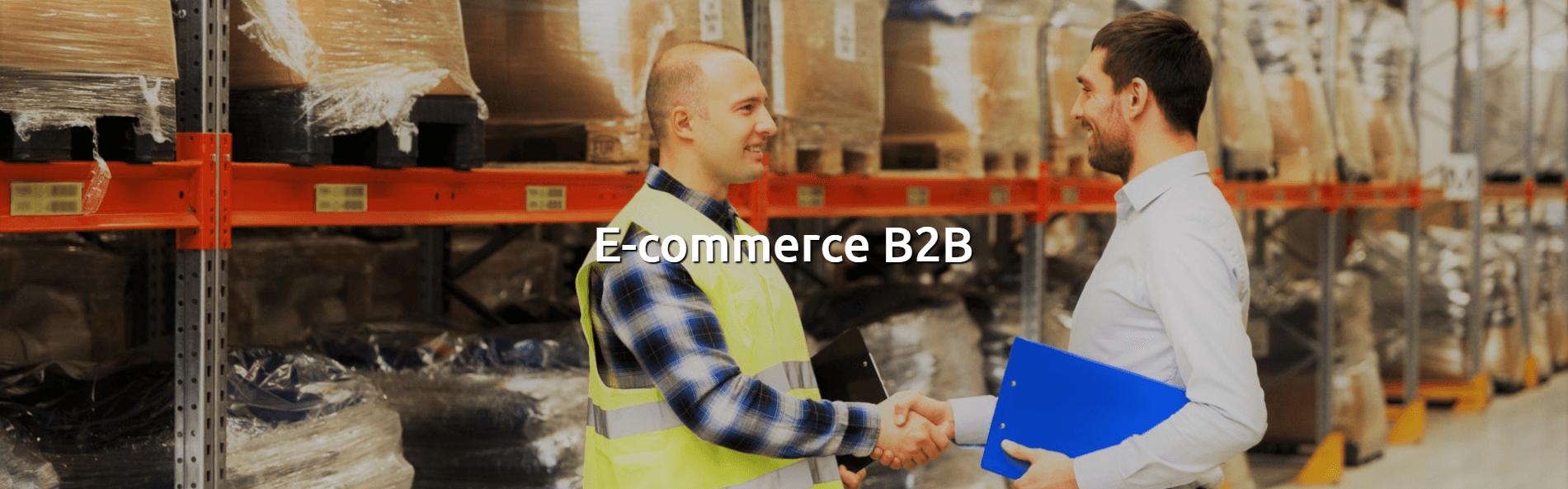Ecommerce B to B